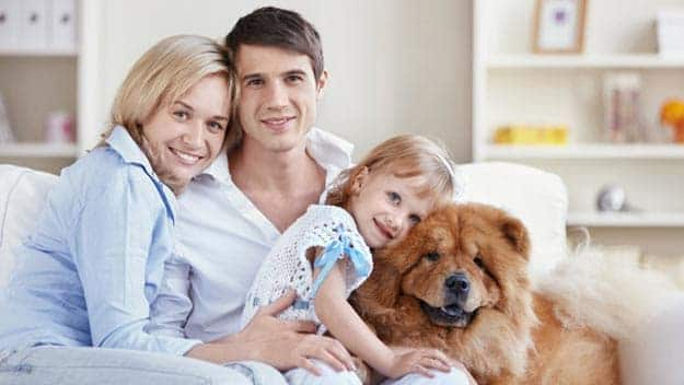 Wills & Trusts dog-young-family Direct Wills Burley